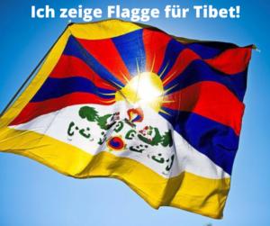 Je montre le drapeau de la photo de profil 1 du Tibet